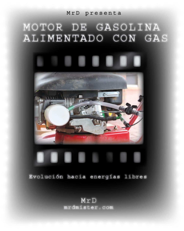 Gas de gasolina